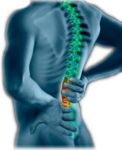 back_pain1